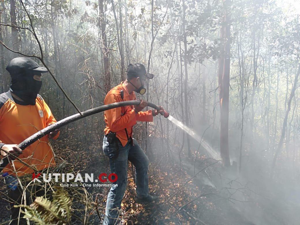 Foto #polreslingga, batam, Berita Lingga, BP Batam, Karhutla, Kebakaran hutan di Batam, Polres lingga, Tanjung Pinggir